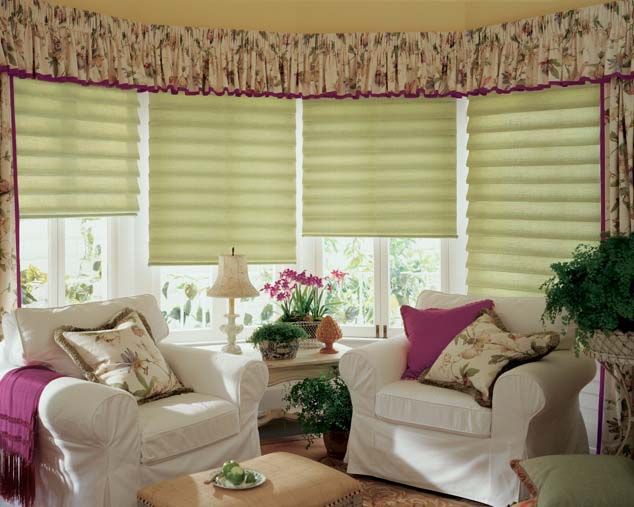 Cave Creek Roman Shades;